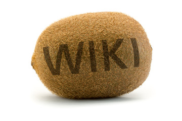 Concept wiki on kiwi. Encyclopedia wikipedia.
