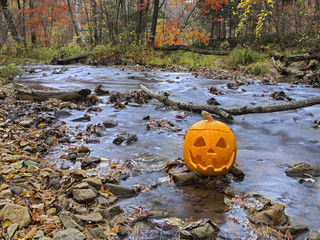 Carved pumpkin head by the autumn river