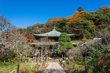 晩秋の鎌倉 瑞泉寺