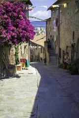 Castiglione della Pescaia, Tuscany, old city. Color image