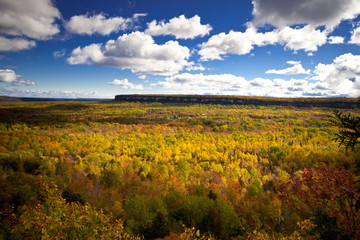 Cape Croker Cliff Autumn Fall Forest Trees landscape