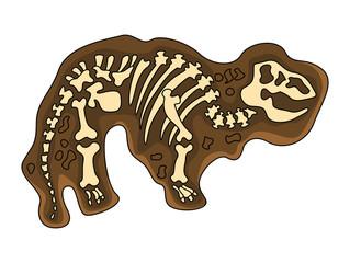 Tyranosaurus Fosil