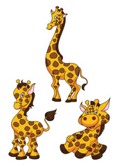 Giraffe Cartoon Funny Illustration
