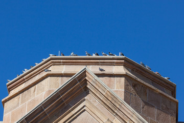 Pigeons Resting on Church