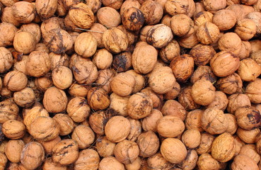 Brown and fresh walnuts as background