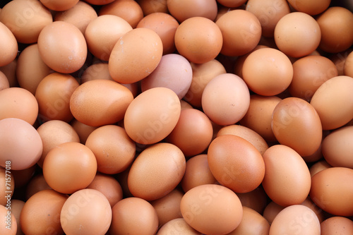 fresh eggs for sale at a market - 71577018
