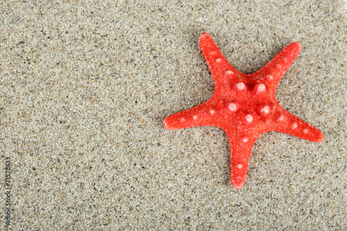 canvas print picture Starfish on sand background