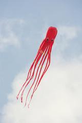 Kite flying - shape of octopus