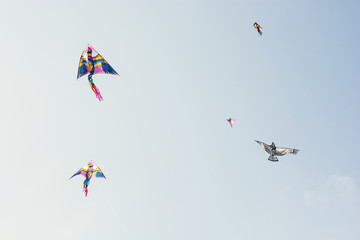 Sky full of colorful flying kites