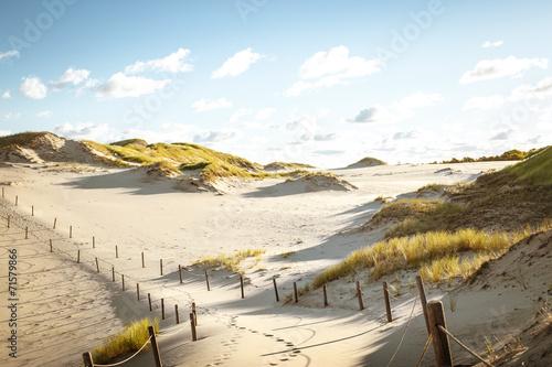 Staande foto Zandwoestijn desert landscape
