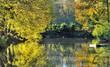 reflets d'automne sur l'eau