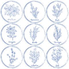 Stamp herbs set