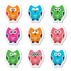Owl cartoon vector icons set
