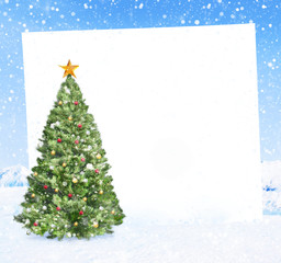 Christmas Tree with Placard on Winter