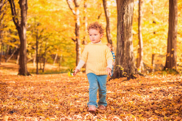 girl with green plant walking through fall forest