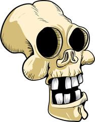 Cartoon skull with big teeth