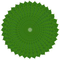 Green circle from leaves