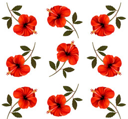 Pattern of beautiful red flowers. Vector.