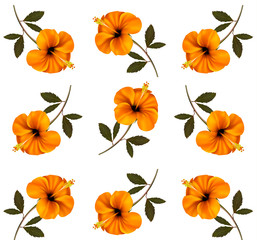 Pattern of beautiful yellow flowers. Vector.