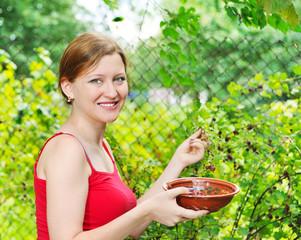 girl gathering fruits