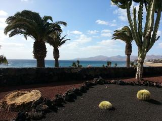 die Kanaren Inseln des ewigen Frühlings