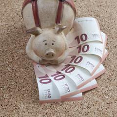 cochon-tirelire et billets d'euros
