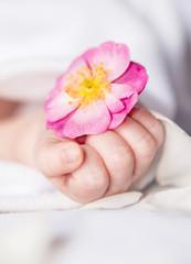 Babyhand Blume