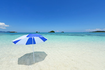 美しく輝く真夏の海