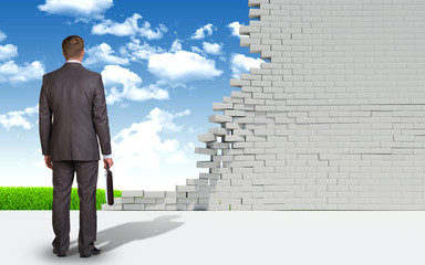 Businessman and ruined brick wall with nature landscape