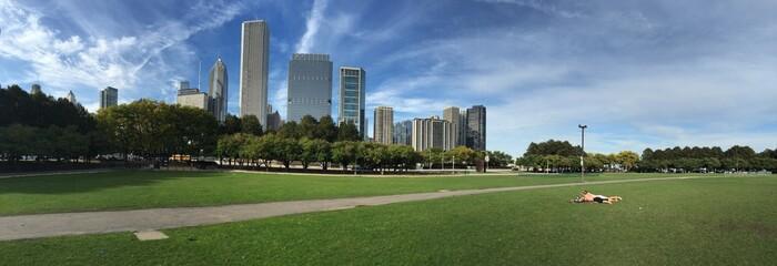 Chicago millenium park grattacieli prato panoramica