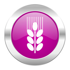 grain violet circle chrome web icon isolated