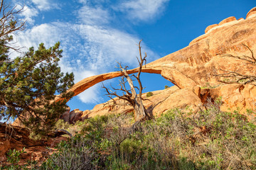 Landscape Arch, Arches National Park Utah