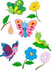 Cartoon butterfly, caterpillar and cocoon
