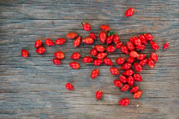 Ripe rose hip berries