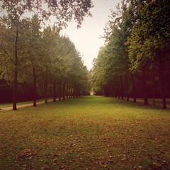 Spaziergang im Tiergarten