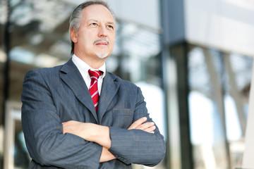Mature businessman portrait