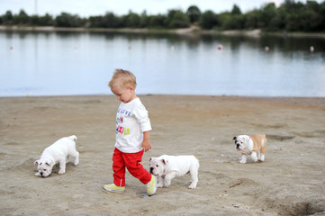 The kid plays with puppies on the bank of the small river on the