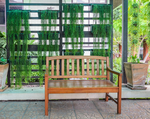 Wooden patio bench with green plants background