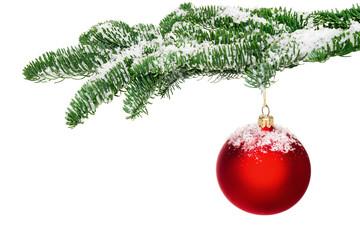 Christbaumkugel hängt am verschneiten Zweig