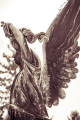 vintage shoot of an bronze angel. Unknown artist of the 18th cen
