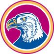 American Bald Eagle Head Side Circle Retro