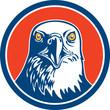 American Bald Eagle Head Circle Retro