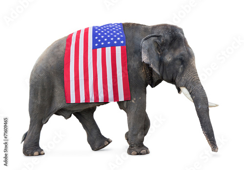 elephant carries a flag USA