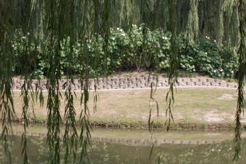 Park in Jiangyin