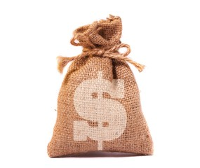 A view of  money bag