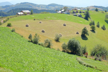 Rolling Landscape, Serbia