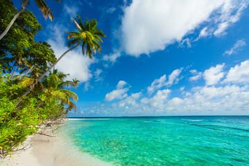 Rest in Paradise - Malediven - Palmenstrand, Himmel und Meer