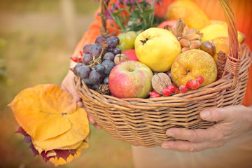 Autumn fruits in hands of woman