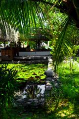Rest in Paradise - Malediven - Bungalow und Teich mit Seerosen
