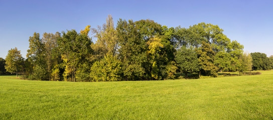Herbst im Magdeburger Stadtpark 08304